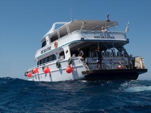 Gedaan: duiken met Voodoo Divers, Hurghada, Egypte